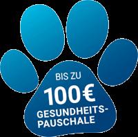 100 € Gesundheitspauschale im Jahr